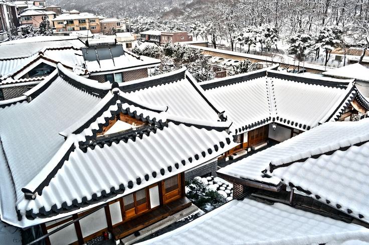 91ee9a29f04f599f5bc32f1119bece68--in-the-winter-south-korea